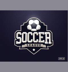 Modern professional soccer logo for sport team vector