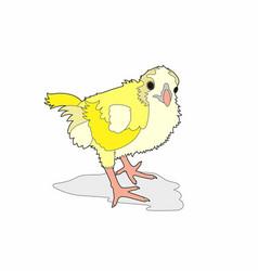 Small yellow bird vector