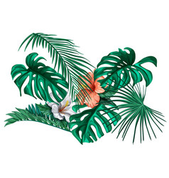 tropical leaf monstera palm hibiscus set vector image