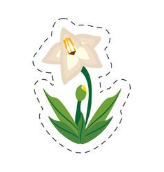 cartoon gladiolus flower image vector image