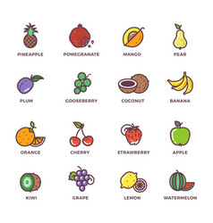 fruits raw food colored icons set vector image