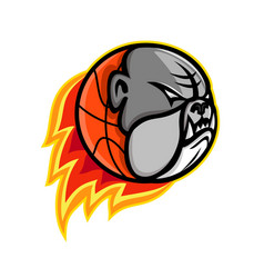 bulldog blazing basketball mascot vector image