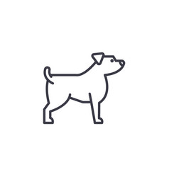 jack russell terrier line icon sign vector image