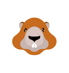 Marmot portrait isolated wild rodent head for vector