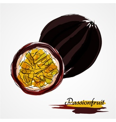 passionfruit fruits vector image