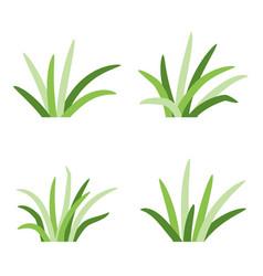 Set of grass tufts clip art transparent backdrop vector
