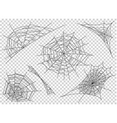 web spider cobweb icons set outline vector image