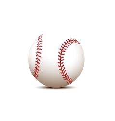 basball ball vector image vector image