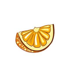 hand drawn slice of orange vector image vector image