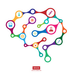 multicolor connection brain with icon creative vector image