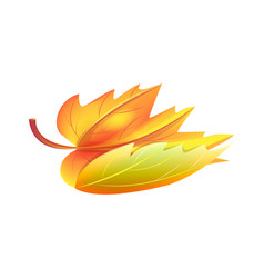 Autumn golden yellow leaf icon vector