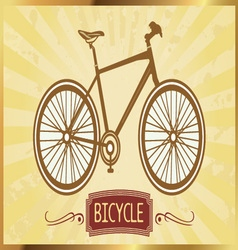 bicycles image vector image