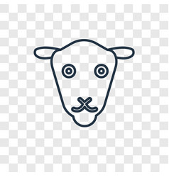 female sheep concept linear icon isolated on vector image