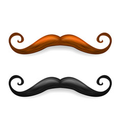 mustache brown and black vector image