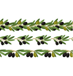 olive branches seamless border vector image