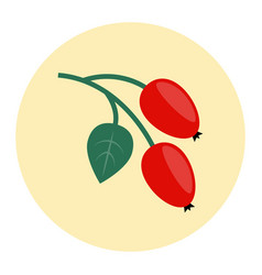 rosehip icon flat vector image