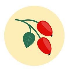 Rosehip icon flat vector