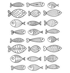 set stylized fishes collection of vector image