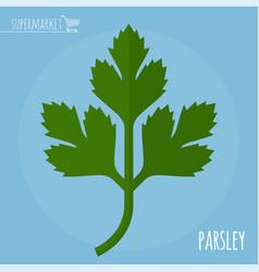 parsley flat design icon vector image