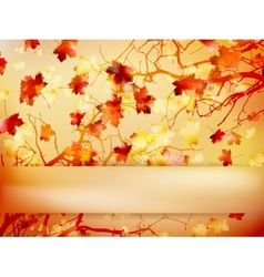 Autumn with leaves Back to school EPS 10 vector image