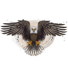 eagle flying bald vector image