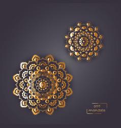 flower oriental mandala vector image