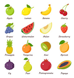 Fruit food icons set isometric style vector