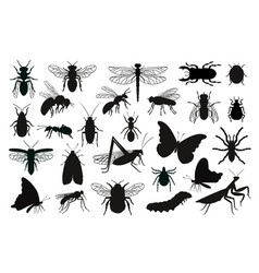 insects silhouettes set vector image