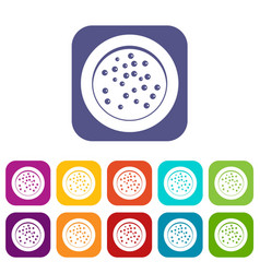 peppercorns on a plate icons set flat vector image