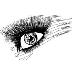 usa flag in beautiful female eye vector image