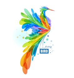 Colorful fantasy bird vector image vector image