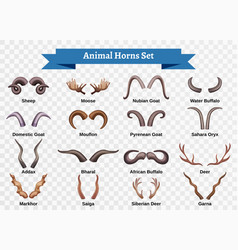 animal horns sticker set vector image