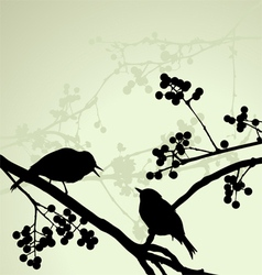 Birds on the branch Sunny day vector