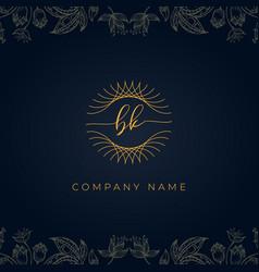 Elegant luxury letter bk logo vector
