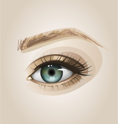 Eye close up vector image