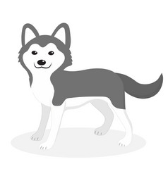 Husky breed dog icon flat cartoon style cute vector