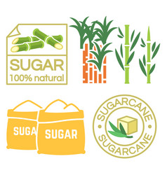 Sugar and sugar cane labels icons vector