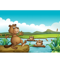 Beavers playing in the river with woods vector image vector image