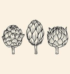 vegetables artichoke on beige background vector image