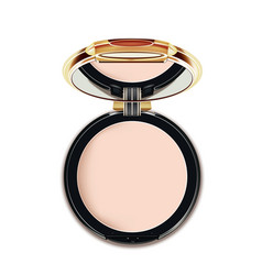 face cosmetic makeup powder vector image vector image