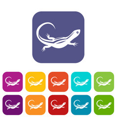 lizard icons set vector image vector image