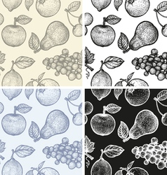 Fruits patterns BW vector image