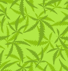Marijuana is a seamless pattern Background of vector image vector image