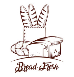 bread fresh bakery products food sketch image vector image
