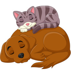 Cartoon cat and dog sleeping vector