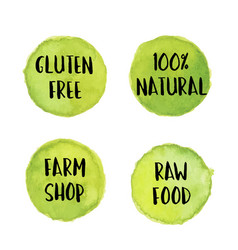 Circle light green label with text vegan and vector