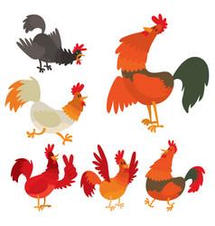 cute cartoon rooster chicken vector image