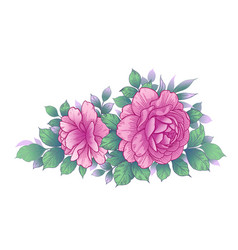 Hand drawn floral bunch with pink roses and vector