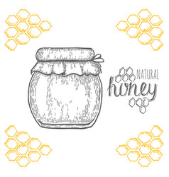 Hand drawn jar of honey over white background vector