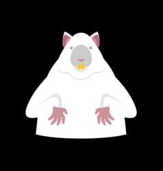 Laboratory mouse is white red eyes rat for vector